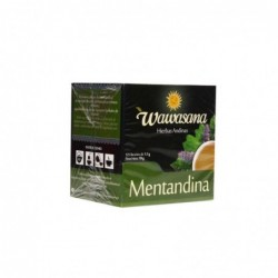 Wawasana Andean Mint (Wawasana Mentandina)